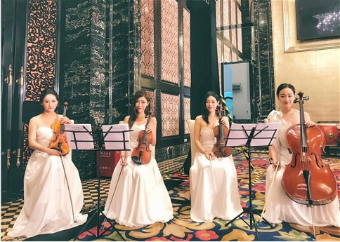 亚博体育yabo88小提琴、亚博体育yabo88大提琴.png